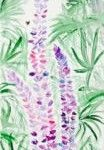 Lupinen, 20 x 60 Aquarell auf Leinwand